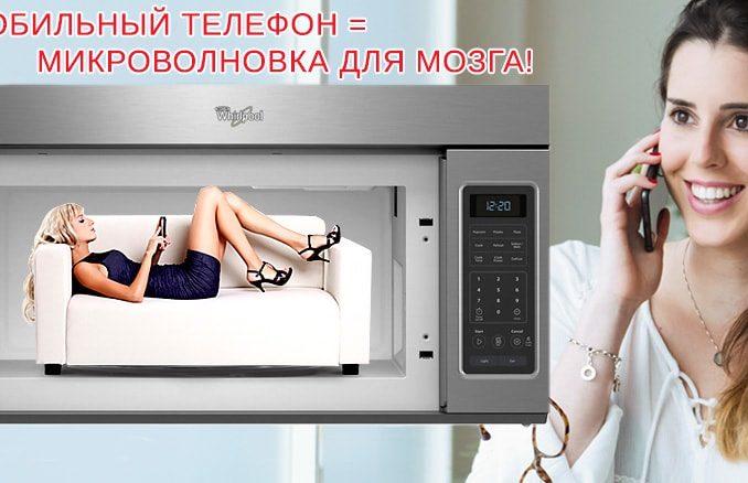 Микроволновка безопаснее мобильника